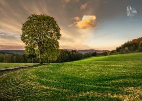 Golden Hour in Northern Boemia, Czech Republic